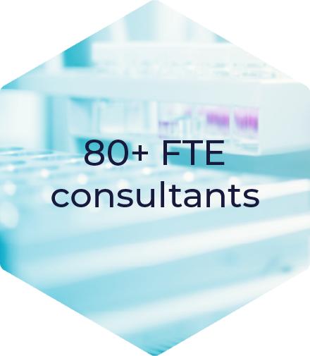 FTE Consultants